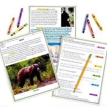 Nonfiction Comprehension Bundle- 2nd & 3rd Grade Common Core Standards