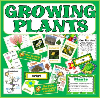 GROWING PLANTS SCIENCE-EARLY YEARS KEY STAGE 1-2 FLOWERS TREES