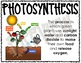 GROWTH AND CHANGES IN PLANTS Science Concepts Posters