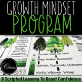 Growth Mindset Program To Boost Confidence and Self-Esteem