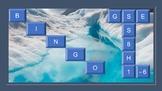 GSE Bingo Vocabulary Games SS8H1- SS8H6