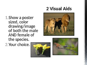 GT Biology - Cross Species Research Project