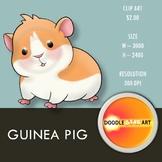 GUINEA PIG Clip Art