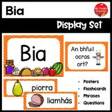 Gaeilge Bia Resource Pack (Food Resource Pack in Irish)