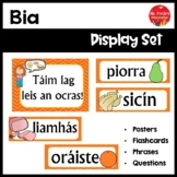 Gaeilge Bia Resource Pack (Food Resource Pack in Irish)