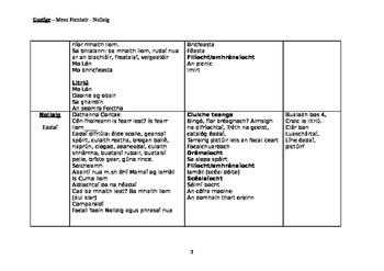 Gaeilge, Long term plan, Bualadh Bos 4