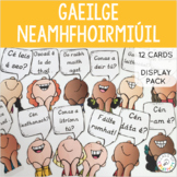 Gaeilge Neamhfhoirmiúil Ceisteanna: Irish Display Pack