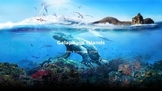 Galapagos  Islands - Power Point - History Information Fac