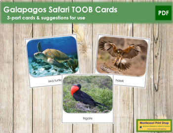 Galapagos Safari Toob Cards - Montessori