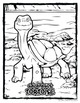 Galapagos Tortoise -- 10 Resources -- Coloring Pages, Read