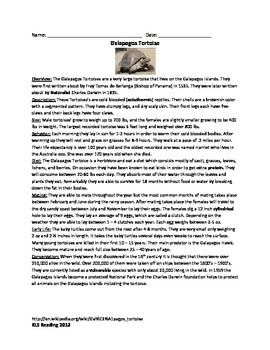 Galapagos Tortoise - Review Article - Questions Vocabulary Word Search