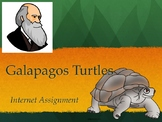 Galapagos Turtles (Evolution) Internet Assignment