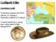 Gallipoli World War One