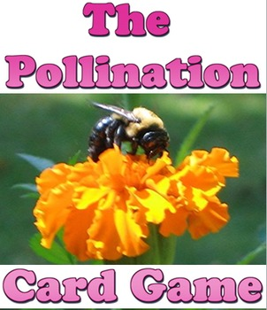 Game: 3 in 1 plant parts, photosynthesis & pollination
