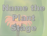 Game: Name That Plant Stage