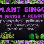 Game: Plant bingo (50 unique cards & clues)