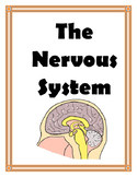 NERVOUS SYSTEM UNIT
