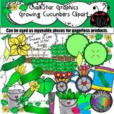 Garden Clip Art- How to Grow Cucumbers by Chalkstar Graphics
