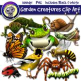 Garden Creatures Ecosystem Clip Art