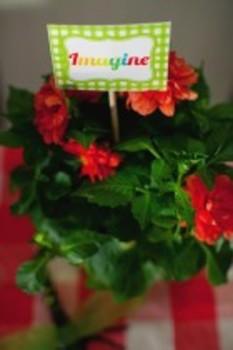 Classroom Decor Garden Party Inspirational Words