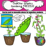 Garden Pea Plant Freebie- Chalkstar Graphics