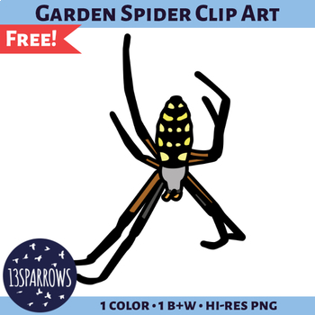 Garden Spider Clip Art
