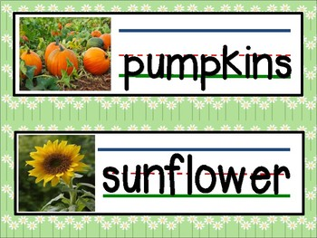 Garden Theme Words