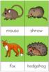 Garden creatures nomenclature cards