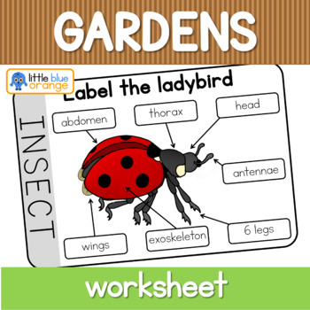 Garden Creatures Worksheet Body Parts Labeling By Little Blue Orange