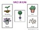 Gardening File Folder Language Activities