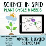Gardening Worksheets: Parts of a Plant Worksheet