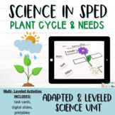 Parts of a flower | Parts of a Plant Worksheet | Special E