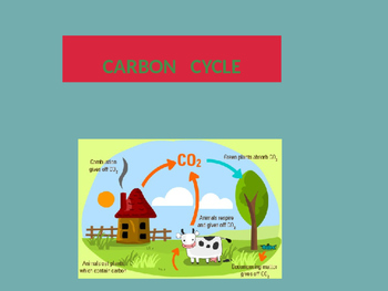 Gases / Cycles