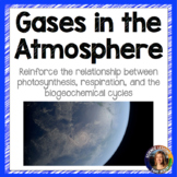 Gases in the Atmosphere Worksheet