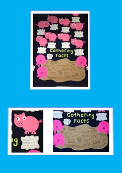 Gathering Facts - Pig Unit