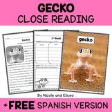 Gecko Close Reading Passage Activities