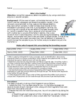 Gel Electrophoresis Marine Life Paternity Test