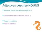Gender Adjective Agreement Spanish