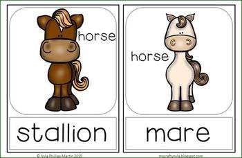 Gender Nouns: Animals - Memory Game