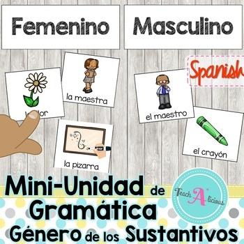 Genero y numero de los sustantivos | Gender of Nouns in Spanish | Mini Unit