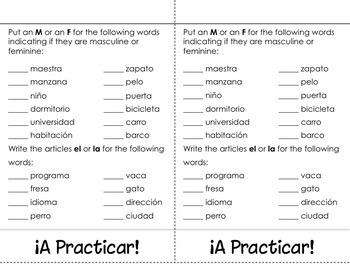 Gender of Nouns in Spanish- Masculino ó Femenino Flip Book