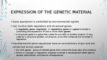 Gene Expression PPT