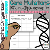 Gene Mutations Graphic Organizer for Interactive Notebooks and More