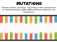 Gene Mutations and Chromosome Mutations - Changes to DNA (Editable)
