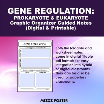 Gene Regulation (Prokaryotic and Eukaryotic) Bundle: Power point and Foldable