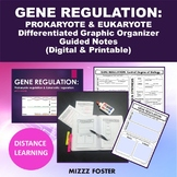 Gene Regulation (Prokaryotic and Eukaryotic) Bundle: Power point and Foldable
