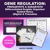 Gene Regulation (Prokaryotic and Eukaryotic) Bundle: Power