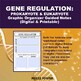 Gene Regulation: Prokayotic (Lac Operon) vs Eukaryotic Gra