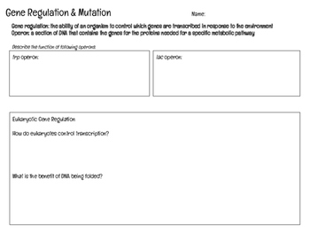 relate gene regulation and mutations