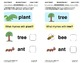 Generate Rhymes 1: Lesson 3, Book 5 (Newitt Prereading Series)